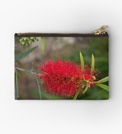 Calistamon Red Studio Pouch