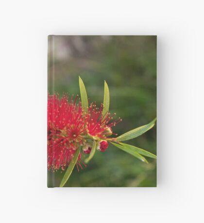 Calistamon Red Hardcover Journal