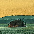 Gulf Islands 21 by Terry Krysak