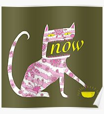 Now Cat Poster