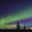 Aurora Dip Into Dawn by Owed To Nature