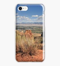 Sagebrush iPhone Case/Skin