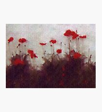 Painted Poppies Photographic Print