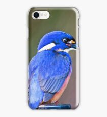 Azure Kingfisher at Shallow Crossing, NSW iPhone Case/Skin