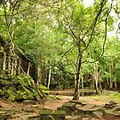 Beng Mealea Temple by Ian Mitchell