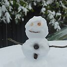 Snowman by Andrew F