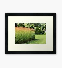 finely manicured lawn Framed Print