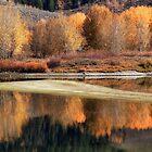 Teton Wasserfarben. von Ann  Van Breemen
