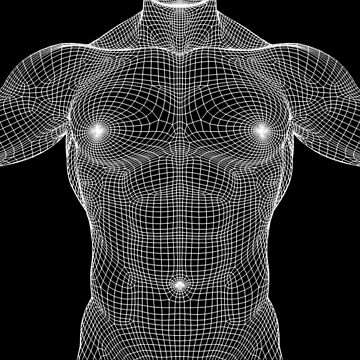 Male Chest Matrix Mesh by Wyldspace