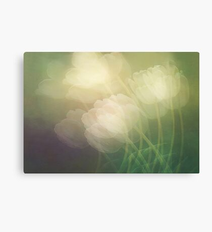 Petals in the wind Canvas Print