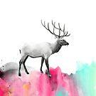 Wild No.2 // Elch von Amy Hamilton