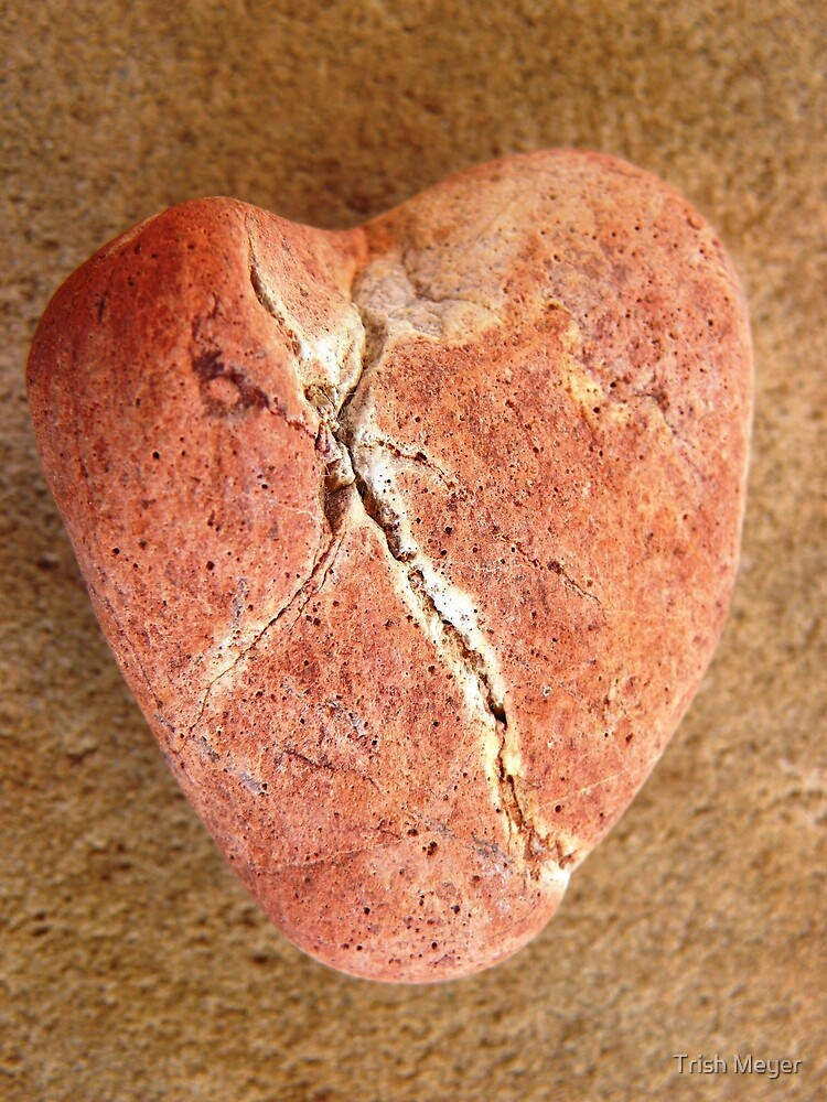 Even a heart of stone can break ... by Trish Meyer