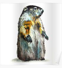 Winter Woodchuck (aka Groundhog) Poster