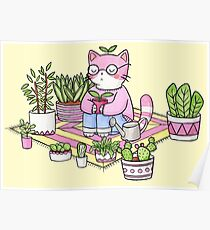 Póster Meditación Cactus