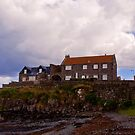 Craster Harbour by Timeless Prints