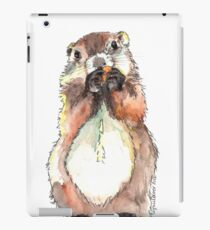 Dinky the Groundhog iPad Case/Skin