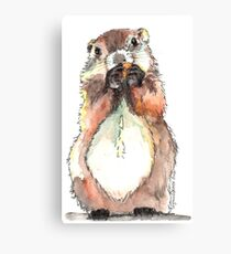 Dinky the Groundhog Canvas Print