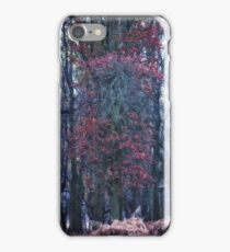 Faerie Trees ~ Fairy Trees With Inner Border  iPhone Case/Skin