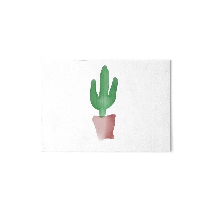 L minas de exposici n cactus de mamao1 redbubble - Informacion sobre los cactus ...