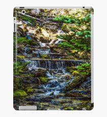 118Three Creeks Lake iPad Case/Skin