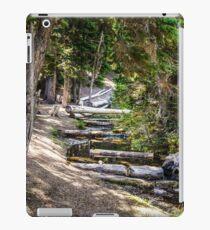 119Three Creeks Lake iPad Case/Skin