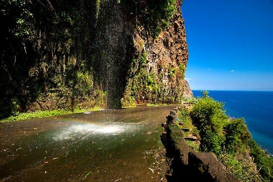 Paradise Land - Nature Photography by JuliaRokicka