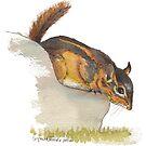 Fat Chipmunk by Lynn Oliver