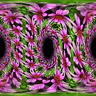 Swirling Pink Daisy Flowers Abstract Design by SmilinEyes