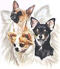 Chihuahua w/Ghost by BarbBarcikKeith