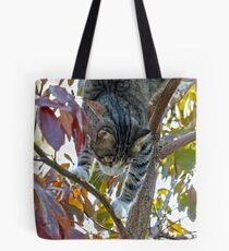 Up the Sassafras Tree Tote Bag