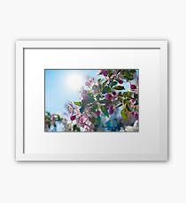 Cute apple blossom in the morning light Framed Print