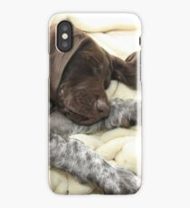 Glossy Grizzly German Shorthaired Pointer iPhone Case/Skin