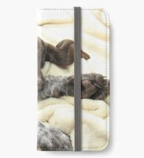Glossy Grizzly German Shorthaired Pointer iPhone Wallet/Case/Skin