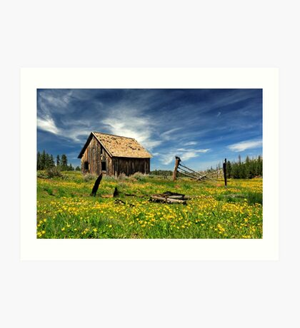 Cabin In A Field Of Flowers Art Print
