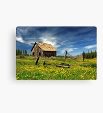 Cabin In A Field Of Flowers Canvas Print