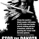 Lakota Prophecy Stop the Dakota Access Pipe Line by m2bulls