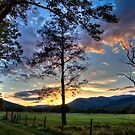 Cades Cove, fall 2014, image 3 by Douglas  Stucky