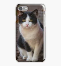 Tuxedo Cat iPhone Case/Skin