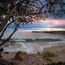 The Pier at Goleta Beach (Golden) by Brian Haidet
