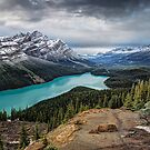Lake Peyto by Peter Hammer