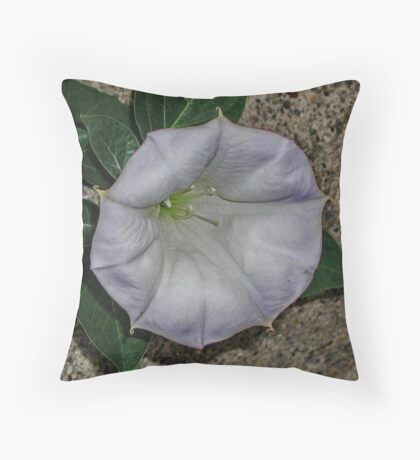 Along the Curb Throw Pillow