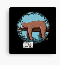Lazy Song of Sloth Canvas Print