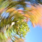 Blur of Autumn by Brittany Scales