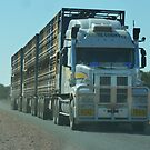 Road train on the Diamantina Development Road  by DashTravels