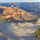 Grand Canyon Sunrise and Shadows by TonyCrehan
