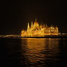 Shining Bright in Budapest by Larry Lingard-Davis