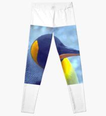 Colorful Penguin Leggings