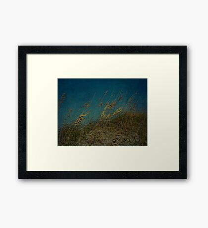 Sea Oats and Storms Framed Print