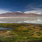 White Lake by DianaC