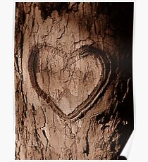 Tree Heart Poster